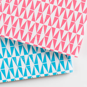Pack of Two Flash Pocketbooks, Hot Pink and Swimming Pool Blue