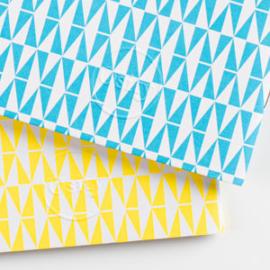 Pack of Two Flash Pocketbooks, Swimming Pool Blue and Luminous Yellow