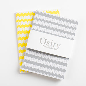 Pack of Two Jazz Pocketbooks, Luminous Yellow and Subtle Silver