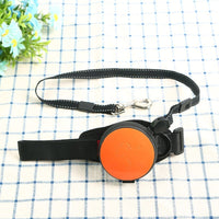 MRK Group Hands Free Dog Leash (Orange)