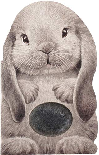Furry Bunny (Mini Friends Touch & Feel)