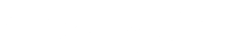 Goose It Lacrosse Co.