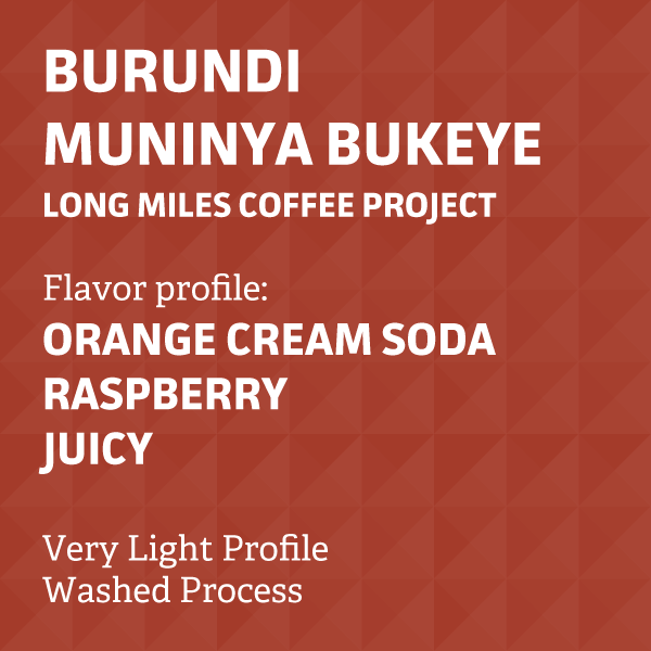 Burundi Muninya Bukeye - Long Miles Coffee Project