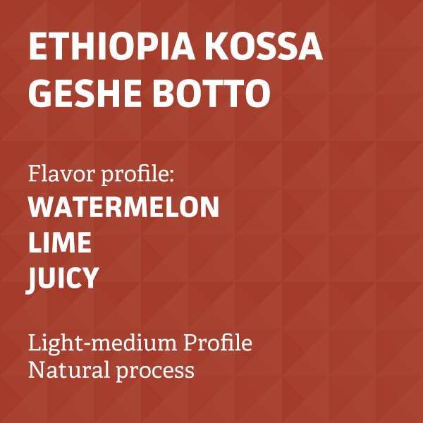 Ethiopia Kossa Geshe Botto Natural