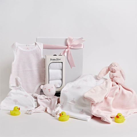 Sweet Little Baby Girl Hamper