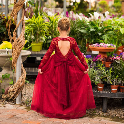 Wine Isabella Heart Shape Big Bow Dress Gown