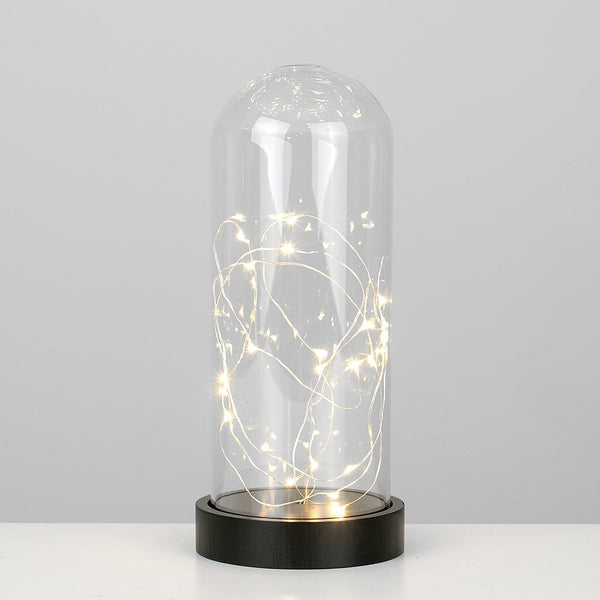 NIXON WW LED CHAIN LIGHT IN GLASS CLOCHE TABLE LAMP