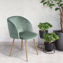 Load image into Gallery viewer, EGGREE Dining Chairs | Vintage Velvet Armchairs | Accent Chairs for Living Room Bedroom Kitchen with Metal Chair Legs | Rosa | Cactus Green | Grey | Blue