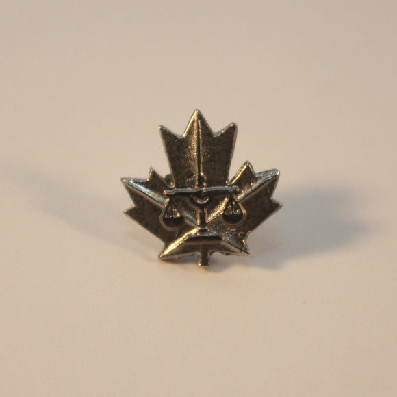 Exemplary Service Medal, Police, Lapel Pin