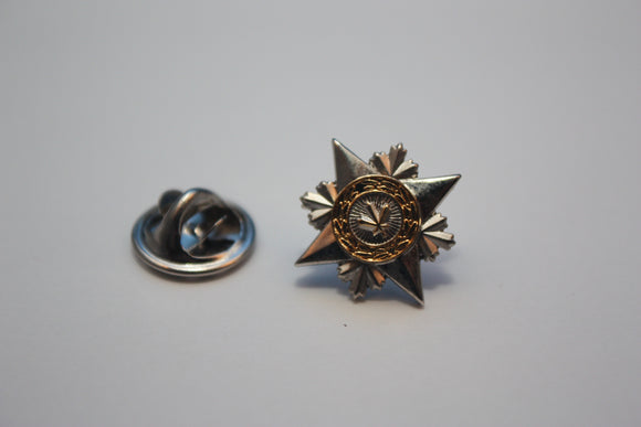 Star of Courage, Lapel Pin