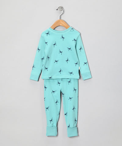Organic 2 Piece FlipFoot Pyjamas - Doggie