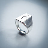 "Doctor Who Ring - Sterling Silver Crack Signet - ""The Fire at the End of the Universe"""