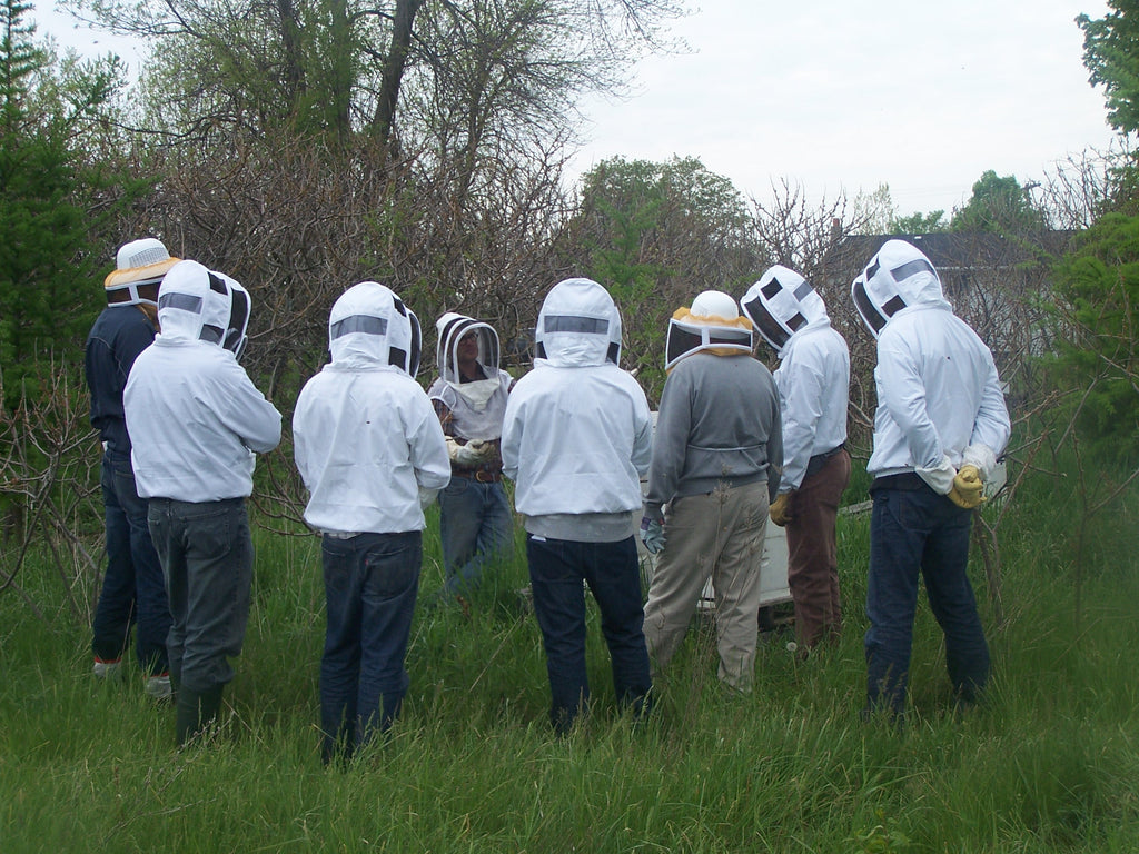 Beekeeping Workshops 2021 - full course
