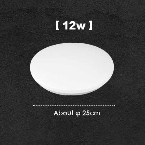 Modern LED Ceiling Light Lamp Surface Mount Lighting Fixture Bedroom Living Room Kitchen Study Home Decor Hallway 220V 230V 240V