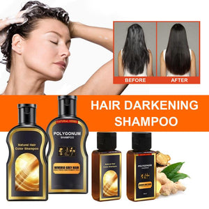 30ml Grey Reverse Hair Color Shampoo Polygonum Multiflorum Ginger Hair Care Hair Darkening Shampoo TSLM1