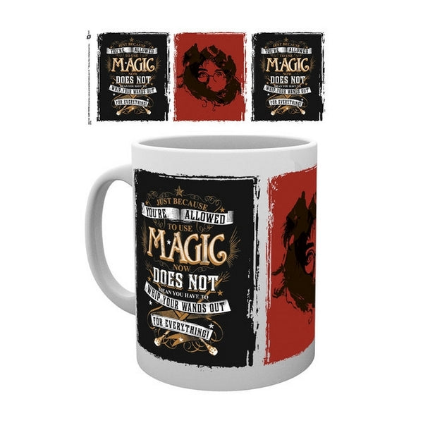 Harry Potter - Mug 10Oz Whip Your Wand Out