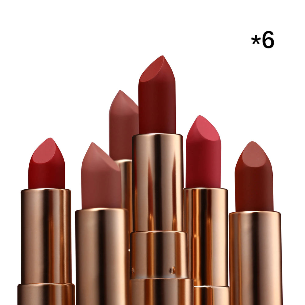 6 Lipsticks All-in-one Set