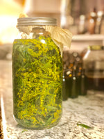 Goldenrod Tincture -Respiratory Support