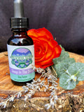 Sleep in the Stars - Sleep Tincture