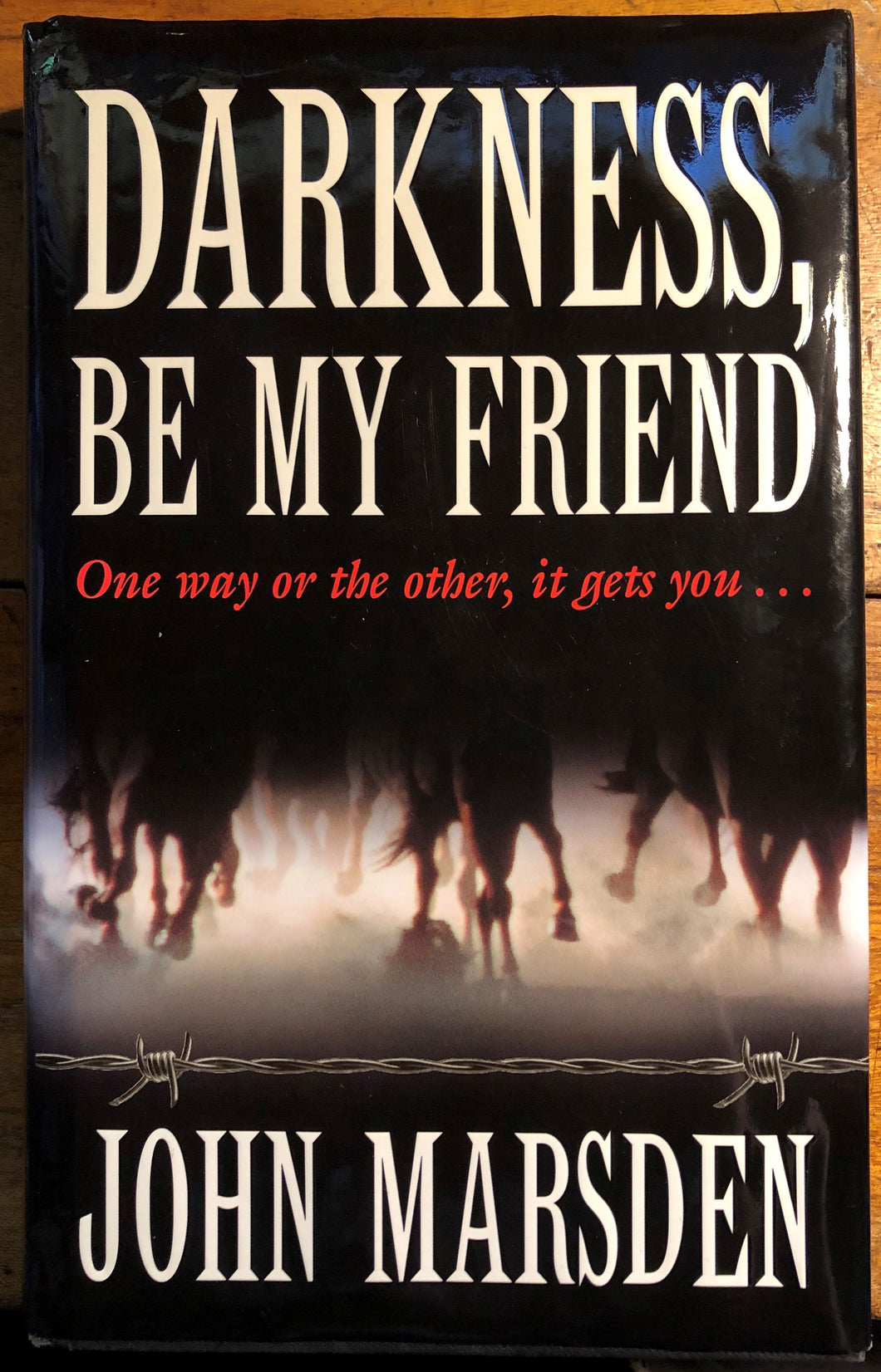 Darkness Be My Friend (First Edition - 1996 Hardcover)