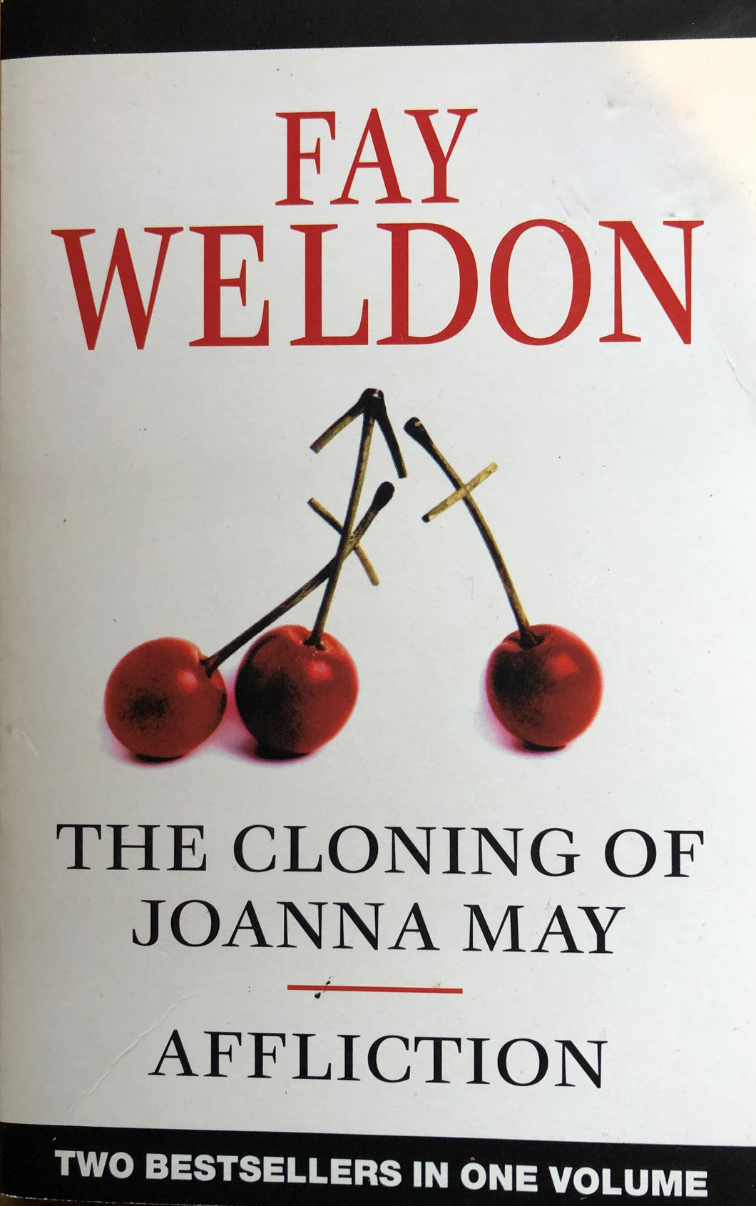 The Cloning of Joanna May / Affliction