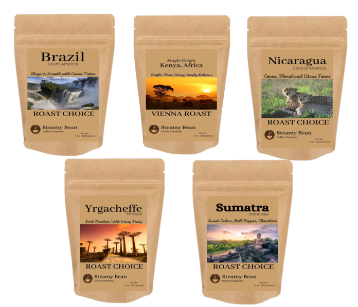 4 oz brown colored kraft coffee bags with labels showing samples of single origins from brazil, kenya, nicaragua, yrgacheffe, sumatra