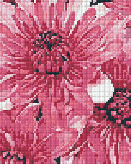 Pixelhobby Klassik Set - Chrysanthemen