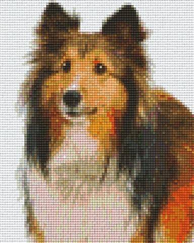 Pixelhobby Klassik Set - Collie Welpe