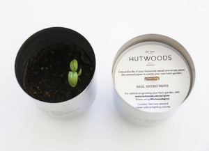 Hutwoods wood wick candle and growing herbs in reused jar