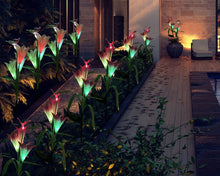 Laden Sie das Bild in den Galerie-Viewer, Lightweight Solar Lily Light Rose Light