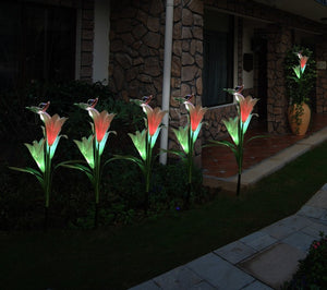 Lightweight Solar Lily Light Rose Light