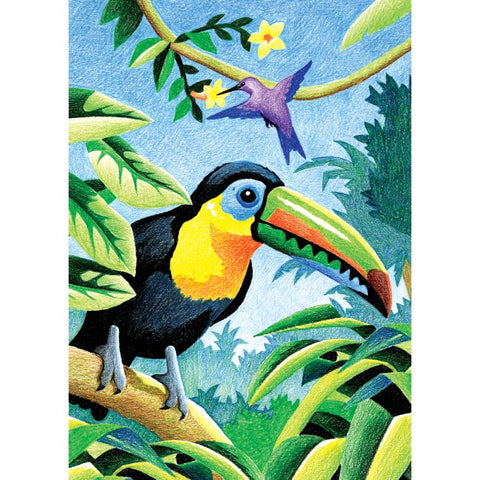 COLOR PENCIL BY NUMBER TROPICAL BIRDS