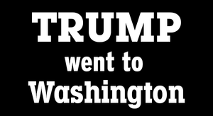 Trump Went to Washington