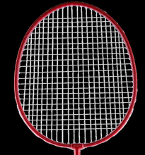 Load image into Gallery viewer, Badminton Racket Outdoor Usage BR Free