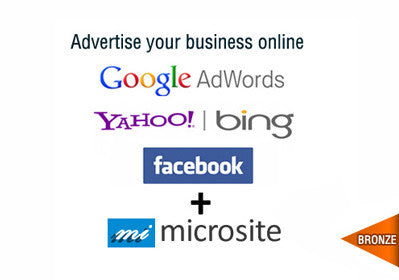 Google + Bing + Social Bronze Plus
