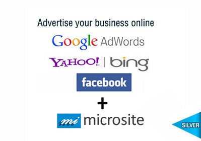Google + Bing + Social Silver Plus 1