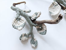 Load image into Gallery viewer, Snow Queen Pothos Sculpture - Macrame