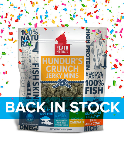 Plato Pet Treats Hundur's Crunch Icelandic Fish Jerky Mini's
