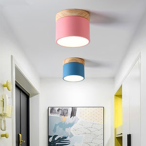 Dimmable Iron and Wood Ceiling Light