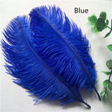 Beautiful 10pcs high quality natural ostrich feathers 6-8 inch / 15-20 cm  wedding and party decorations