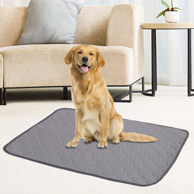 Reusable Dog Pee Mat - Etrendpro