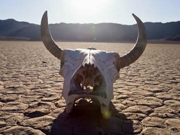 The Earth's Furies: Desertification