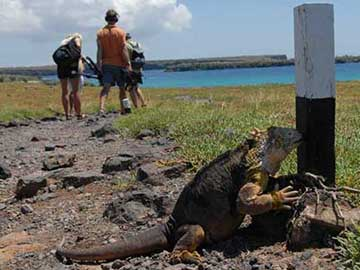WHAT WOULD DARWIN THINK? Man vs. Nature in the Galapagos