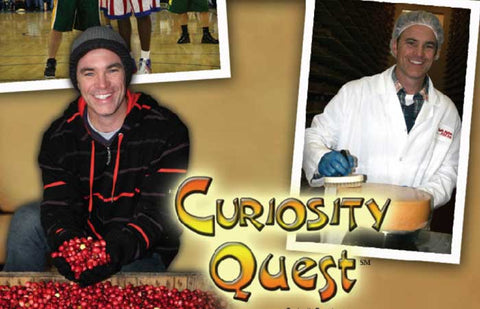 CURIOSITY QUEST: Cranberries