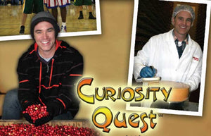 CURIOSITY QUEST: Mushrooms