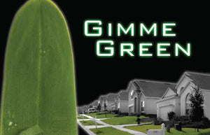 Gimme Green