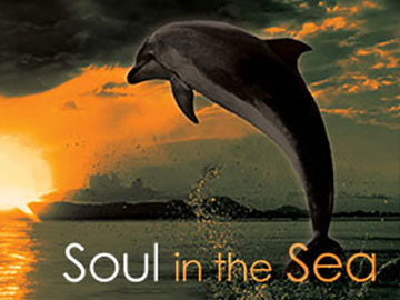 Soul in the Sea