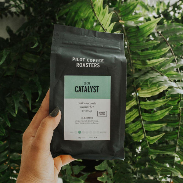 Catalyst Decaf by Pilot - 340g