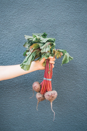 How can beets support a healthy immune system | NutriGardens