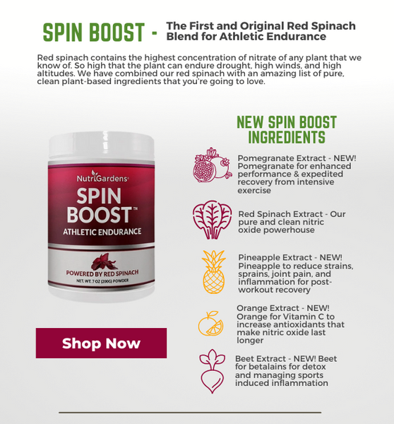 Spin Boost Powder Infographic | Red Spinach Powder